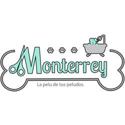 logo-Monterrey250x250